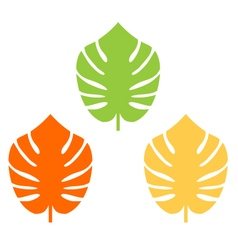 Exotic leaves colorful collection for your design vector