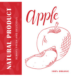 Food design with fruit hand drawn sketch of apple vector