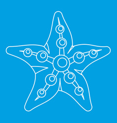 sea star icon outline style vector image vector image