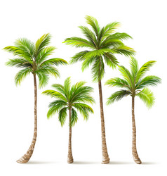 palm trees set vector image