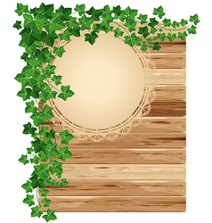 Wooden background with ivy vector