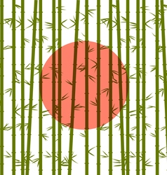 Bamboo on a background of the red sun vector image