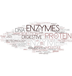 Enzyme word cloud concept vector