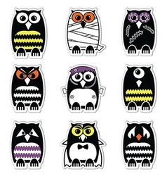 Halloween owls labels style in colour vector