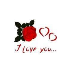 Image Valentine with red rose on white vector image vector image