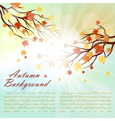 Autumn Frame vector image