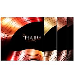 Hair palette vector image