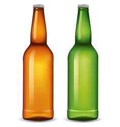 Set of beer bottles isolated on white background vector