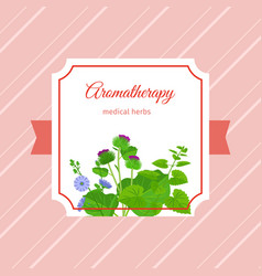 Aromatherapy medical herbs label design vector