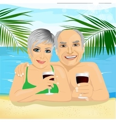 Senior couple drinking red wine lying on the beach vector