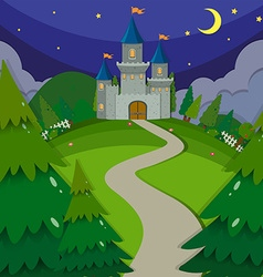 Castle towers at night vector
