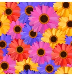 Gerbera seamless pattern floral background vector