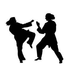 Women karate fight vector