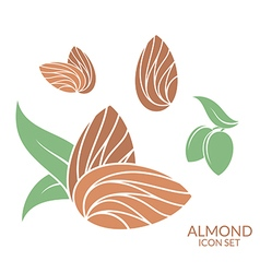 Almond icon set isolated fruit on white vector