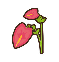 Cartoon anthurium leaf plant exotic vector