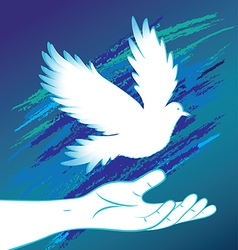 People hand and bird pigeon vector