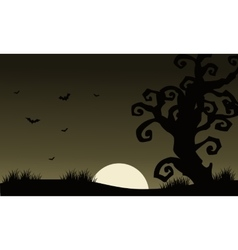 At afternoon halloween scenery bat and dry tree vector