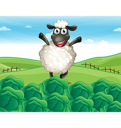 Sheep farm vector