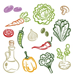 Salad vegetable vector