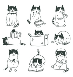 Cat set vector