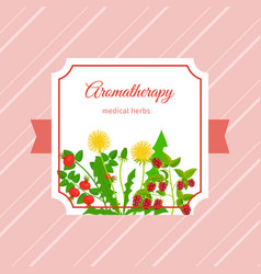 Medical aromatherapy herbs label design vector