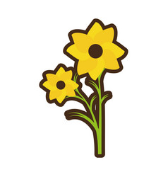 Cartoon nasturtium petal spring beauty vector