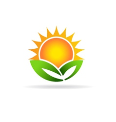 Sun eco plant image concept of ecology green vector
