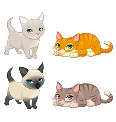 Group of cute cats with different colors vector