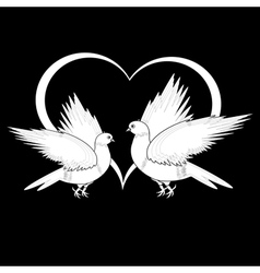 A monochrome sketch of two flying doves vector image vector image