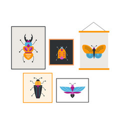 bugs insects butterfly ladybug set vector image vector image