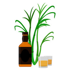 Rum set alcohol drink glasses shots rum bottle vector