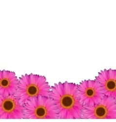 Gerbera flower natural background vector