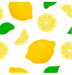 lemon theme seamless pattern collection of vector image