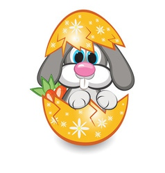 rabbit in the egg vector image