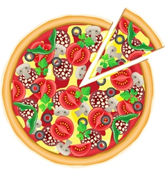 Pizza and cut piece isolated on white background vector