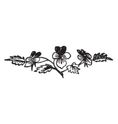 Flower decorated with leaves vintage engraving vector