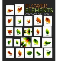 flower elements set vector image