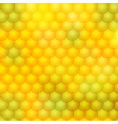 Color blur backgrounds 02 vector
