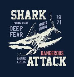 Dangerous shark with typo vector