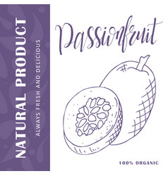 Hand drawn fruit  sweet passionfruit vector