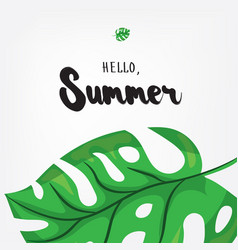 Hello summer holiday greeting card with monstera vector