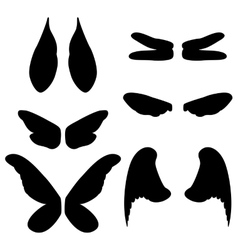 wings of different animals vector image vector image