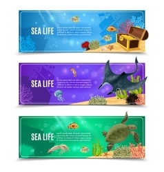 Sea life banner set vector