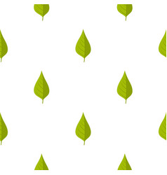 Apple tree green leaf pattern seamless vector