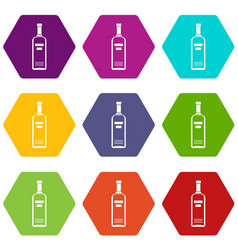 bottle of vodka icon set color hexahedron vector image vector image