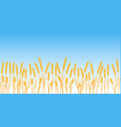 Banner wheat field on blue sky background vector