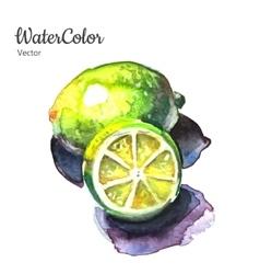 Hand painting abstract watercolor lemon vector