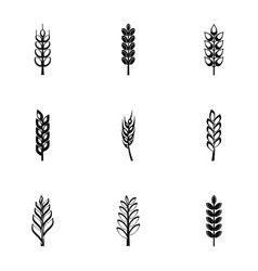 Cereal grain icon set simple style vector