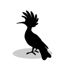 hoopoe bird black silhouette anima vector image