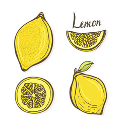 Set of hand drawn sketch lemons isolated yellow vector